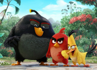 Angry Birds �������� ������ ������� ������ (�����)